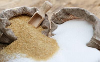Sukker – et essentielt næringsstof